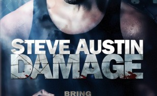 "Poster for the movie ""Damage"""