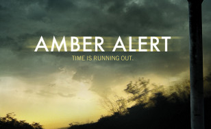 "Poster for the movie ""Amber Alert"""