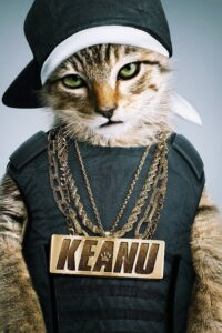 """Poster for the movie """"Keanu"""""""