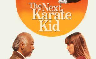 "Poster for the movie ""The Next Karate Kid"""